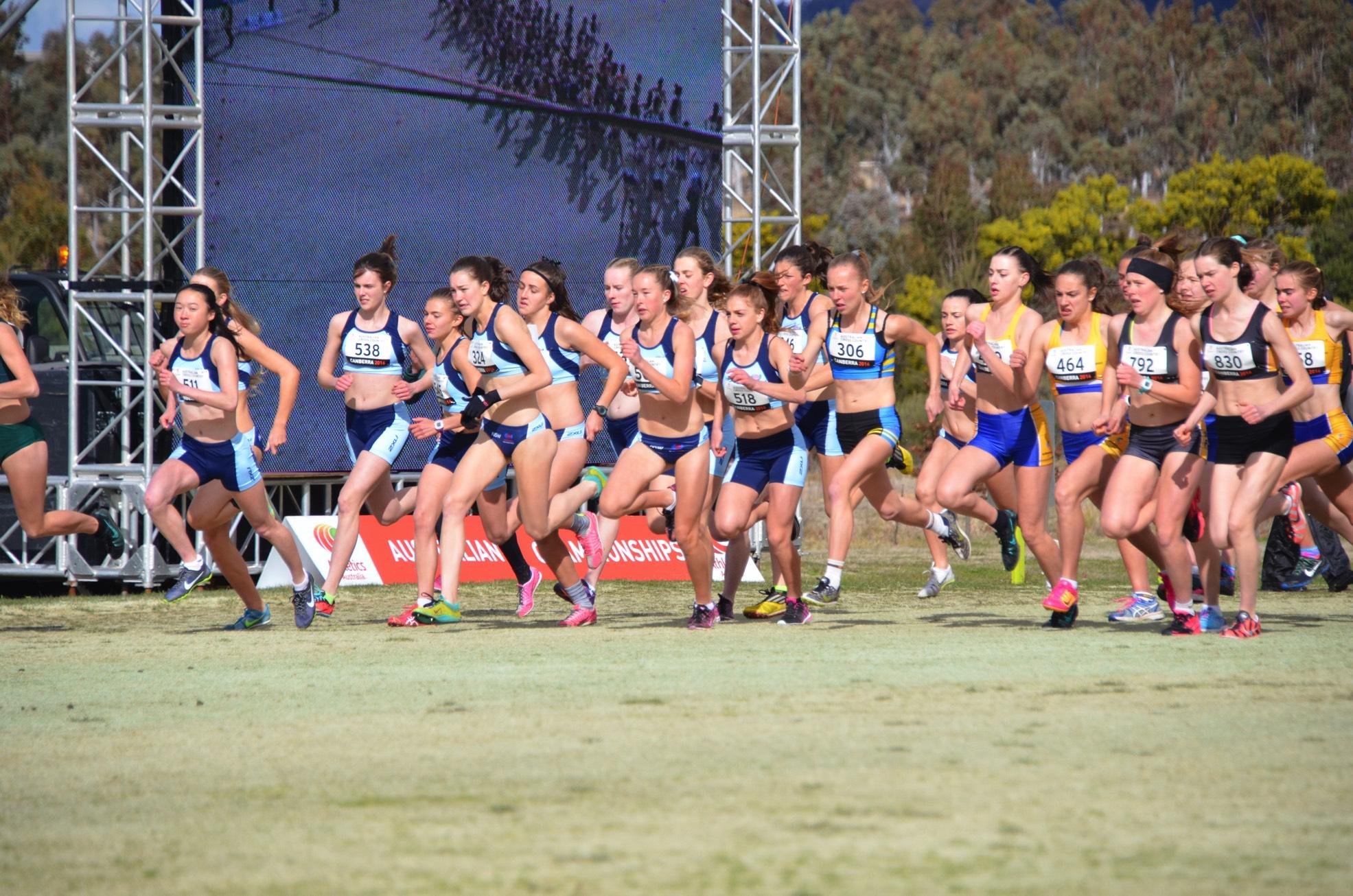 2016 Australian National XC Championships: Photo By Ewa Facioni